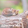 http://inspiroom.at.ua/graphics2/grap/grap3/kis14.png